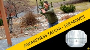 Awareness-Tai-Chi-108-Moves.jpg