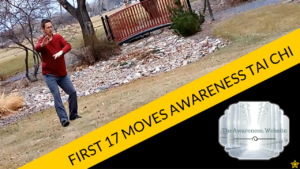 First-17-Moves-Awareness-Tai-Chi.png